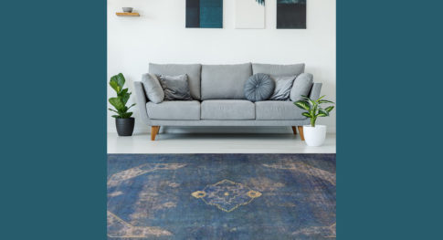 Posters above grey settee in bright living room interior with pl